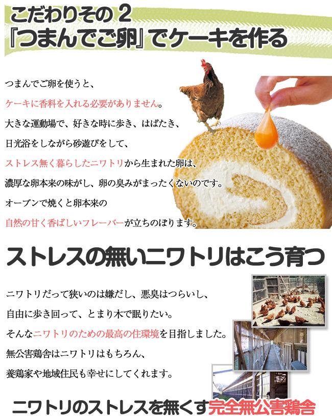 「つまんでご卵」でケーキを作る